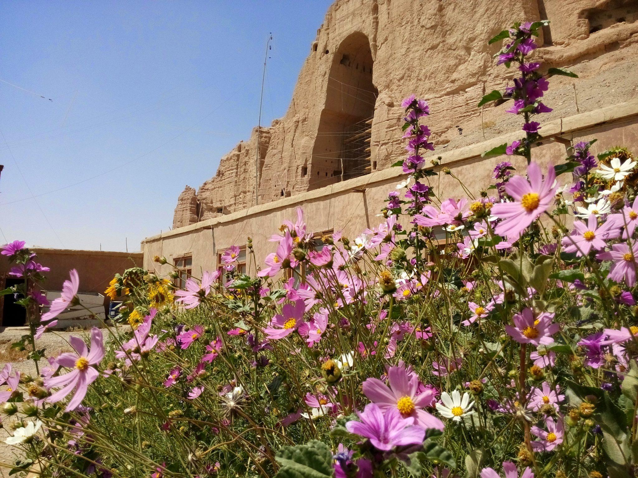 Widok na niszę po posągu Buddy z kwiatami na pierwszym planie w Bamyan w Afganistanie