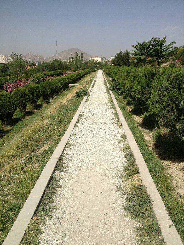 Alejka w ogrodzie różanym w Kabulu