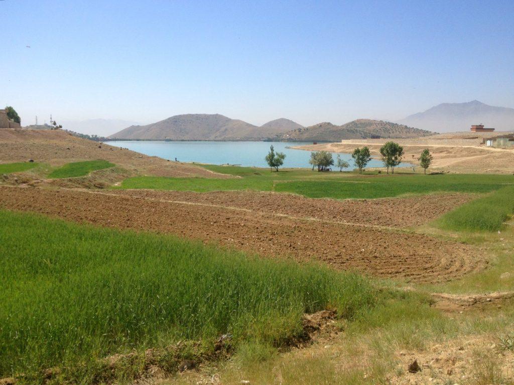 Pola uprawne a za nimi jezioro Qargha