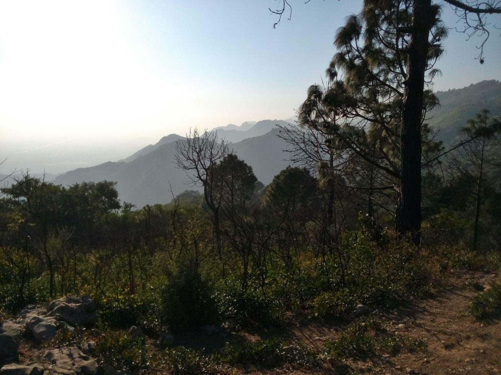 Widok na góry Margalla