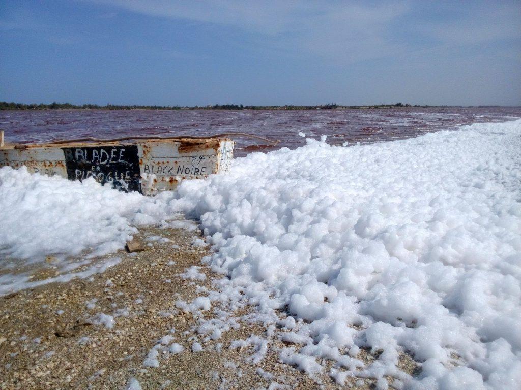 Piana na brzegu Lac Ruge w Senegalu