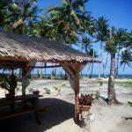 Palmy ocean i plaża w Santa Fe na wyspie Siargao