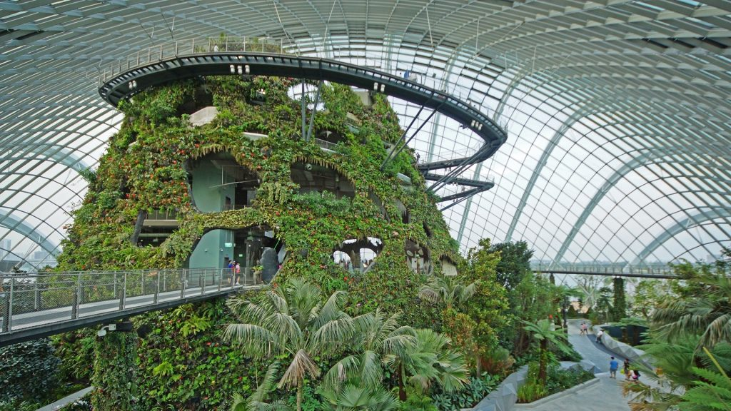 Ogród Zimowy w Gardens By The Bay w Singapurze
