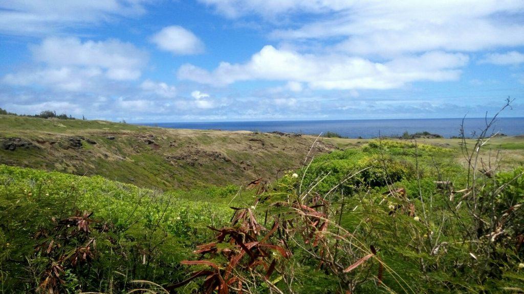 Widok na wzgórza na wyspie Maui na Hawajach