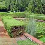 Panorama na ogród angielski w ogrodzie botanicznym w Singapurze