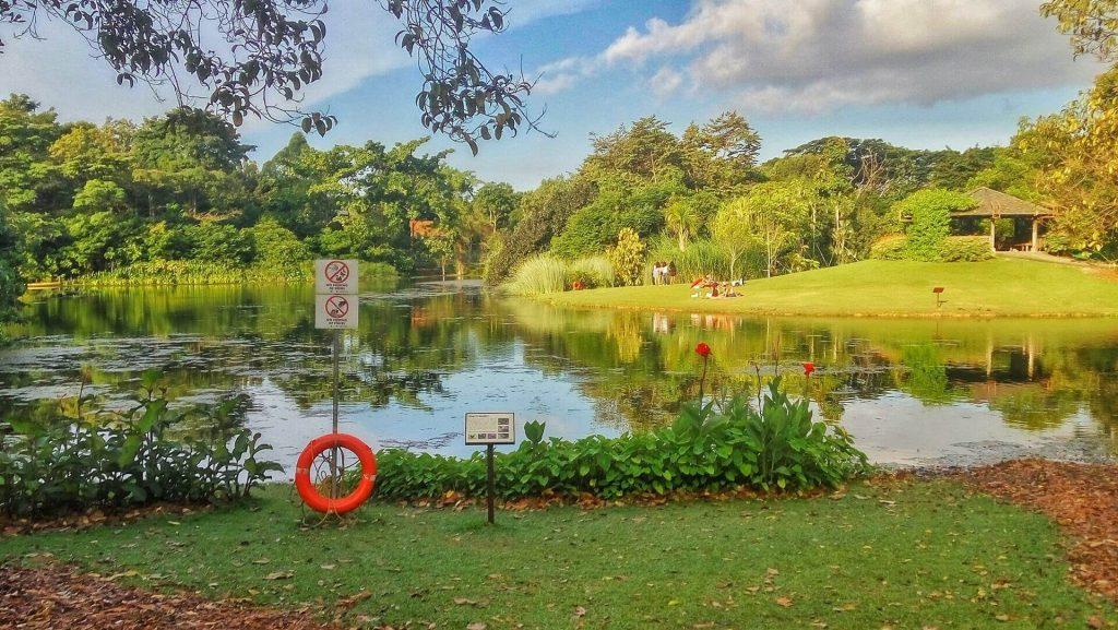 Widok na jezioro w ogrodzie botanicznym