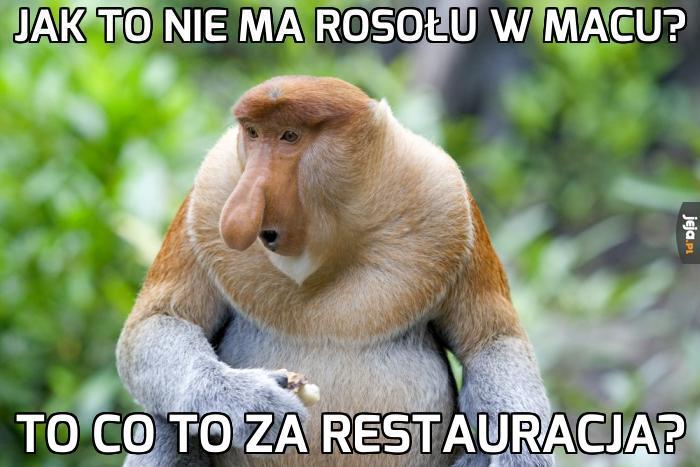 Mem z typowym Januszem czyli Nosaczem Sundajskim