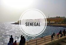 Ocean, słońce i wiatr – galeria zdjęć z Senegalu