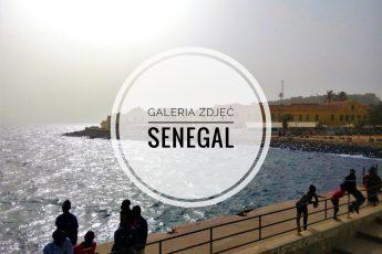 Galeria Zdjęć z niesamowitego Senegalu - okładka postu