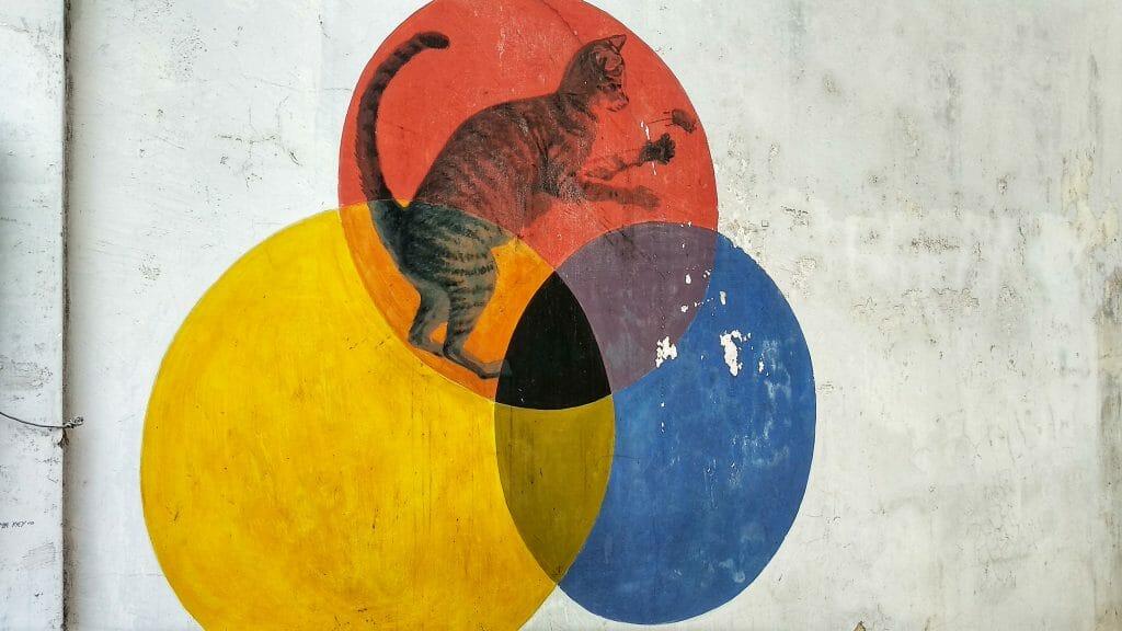 Miasto znane jest również ze sztuki ulicznej, wszędzie pełno jest takich naściennych malunków