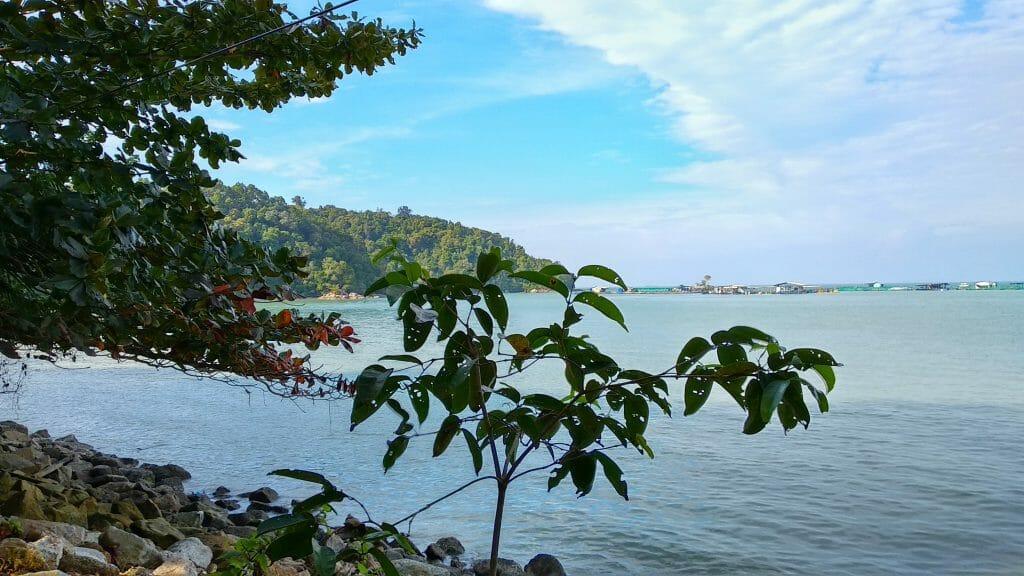 Narodowy Park Penang, jedna z atrkacji wyspy