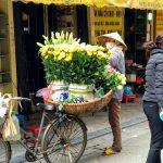 Sprzedawczyni tulipanów w Hanoi w Wietnami