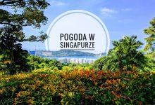 Pogoda w Singapurze – kiedy przyjechać?